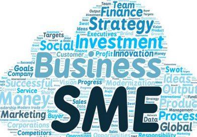 SMEs पर एक दिवसीय कार्यशाला होटल बेबीलोन इंटरनेशनलमें