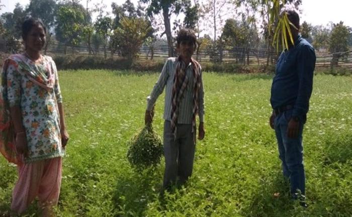 उन्नत तकनीक और जैविक खेती कर अंकालू राम ने की आर्थिक स्थिति मजबूत