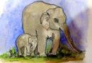 हाथियों को बचाने का उपाय करना अत्यावश्यक : विश्व हाथी दिवस